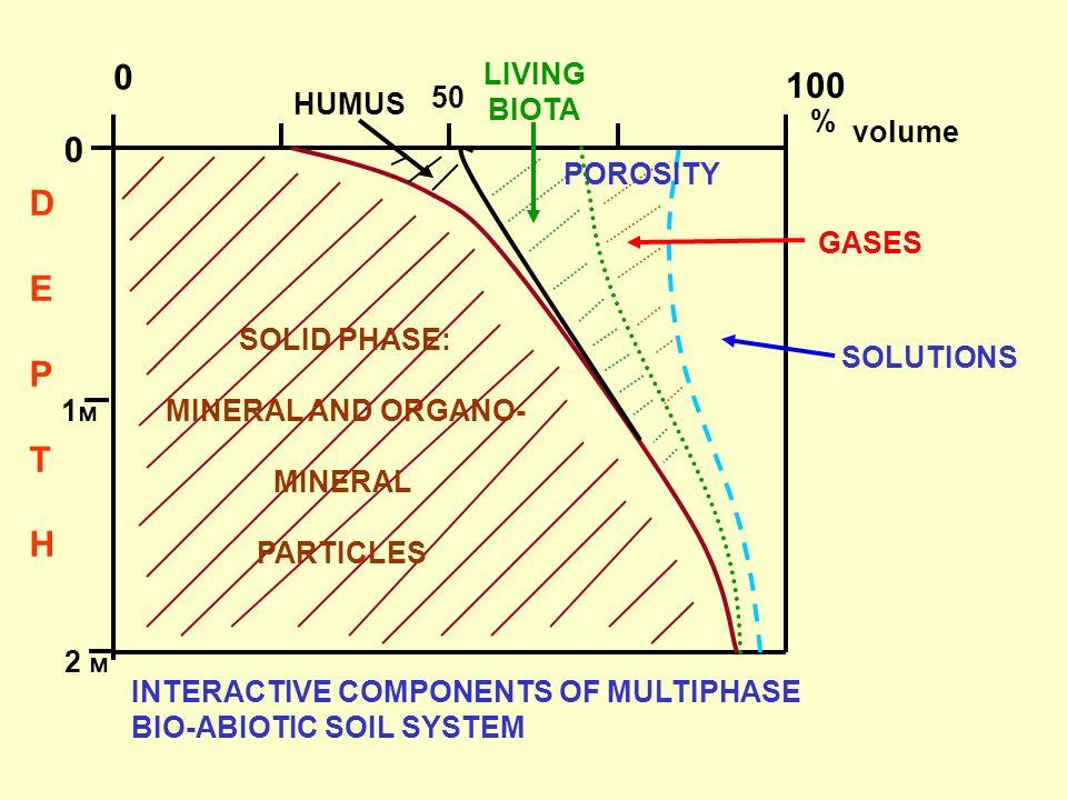 100 D E P T H LIVING BIOTA HUMUS 50 % volume POROSITY GASES