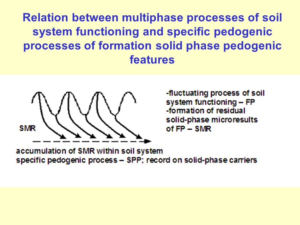 Relation between multiphase processes of soil system functioning and specific pedogenic processes of formation solid phase pedogenic features