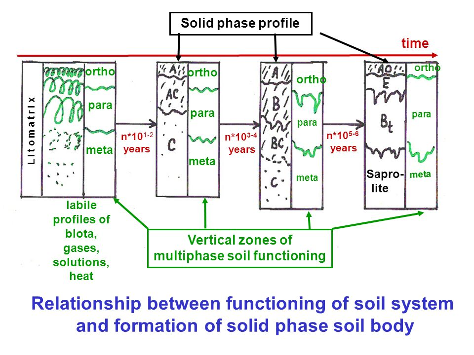Relationship between functioning of soil system