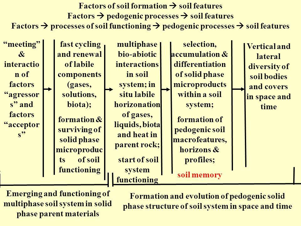 meeting & interaction of factors agressors and factors acceptors