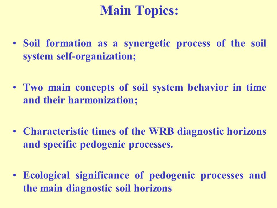 Main Topics: Soil formation as a synergetic process of the soil system self-organization;
