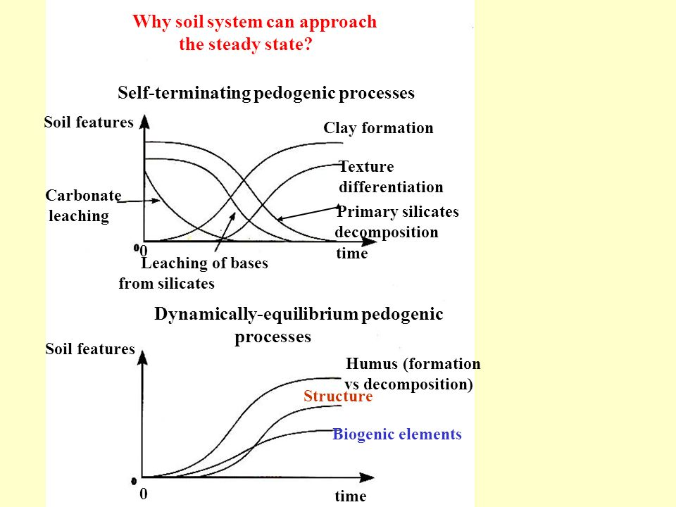 the steady state processes
