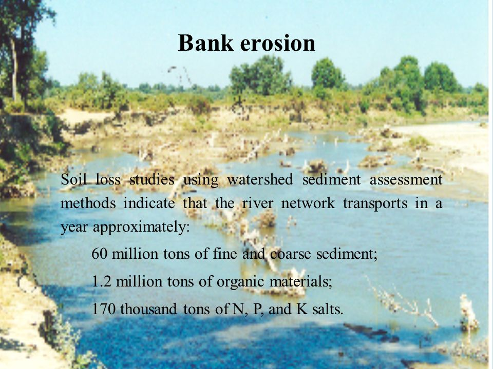 Bank erosion 60 million tons of fine and coarse sediment;