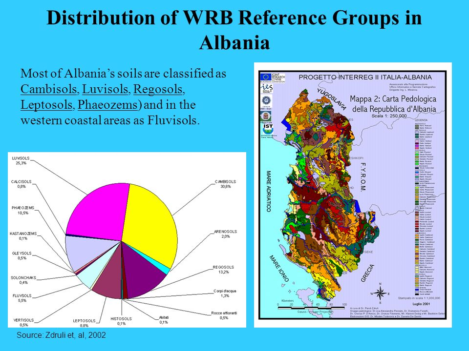 Distribution of WRB Reference Groups in Albania