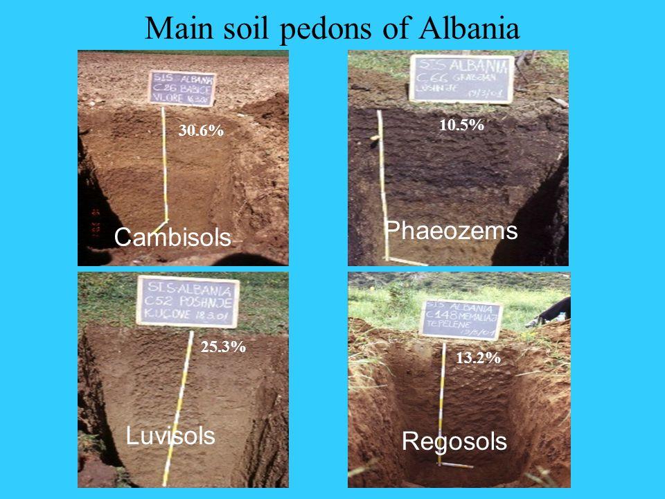 Main soil pedons of Albania