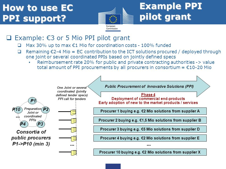 How to use EC PPI support Example PPI pilot grant