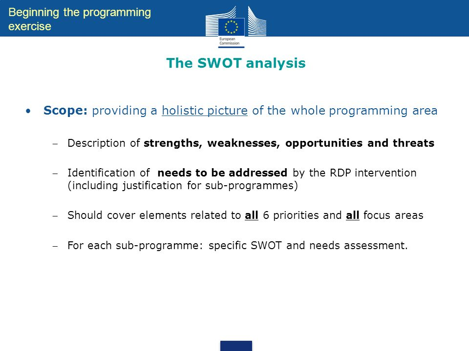 The SWOT analysis Beginning the programming exercise