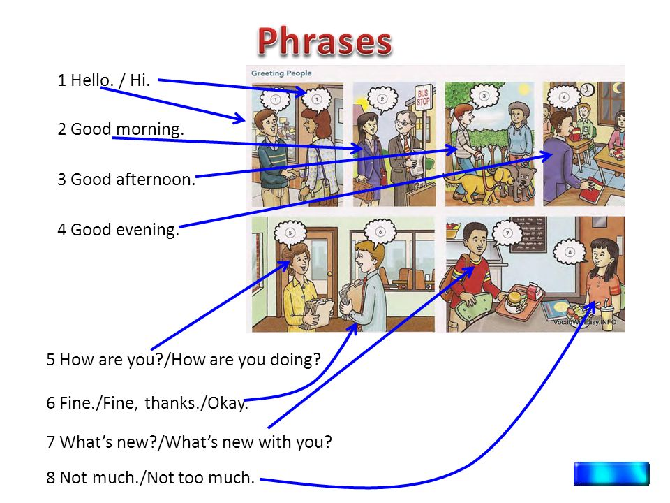 everyday english conversation phrases pdf
