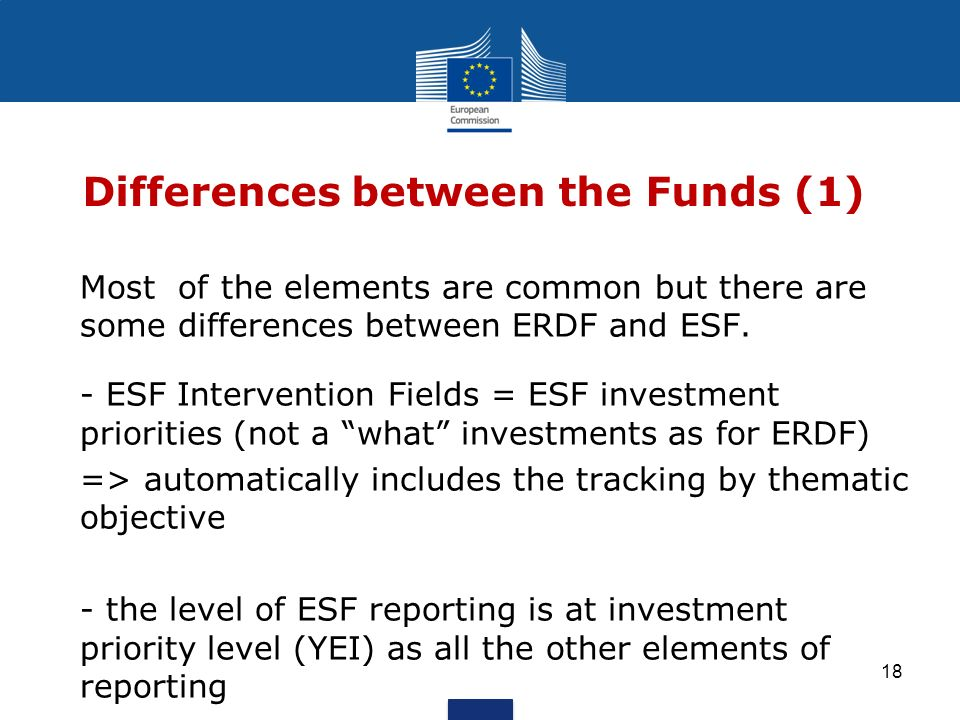 Differences between the Funds (1)