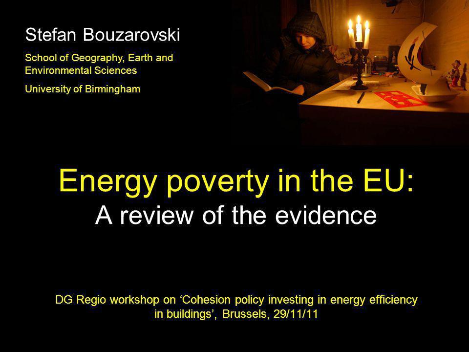Stefan Bouzarovski School of Geography, Earth and Environmental Sciences. University of Birmingham.