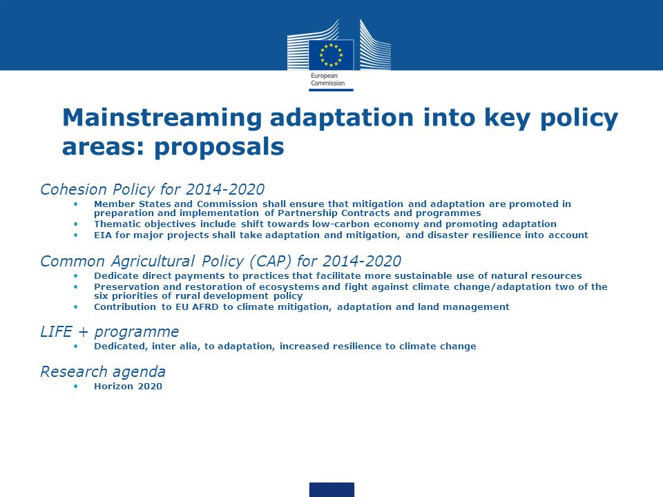 Mainstreaming adaptation into key policy areas: proposals