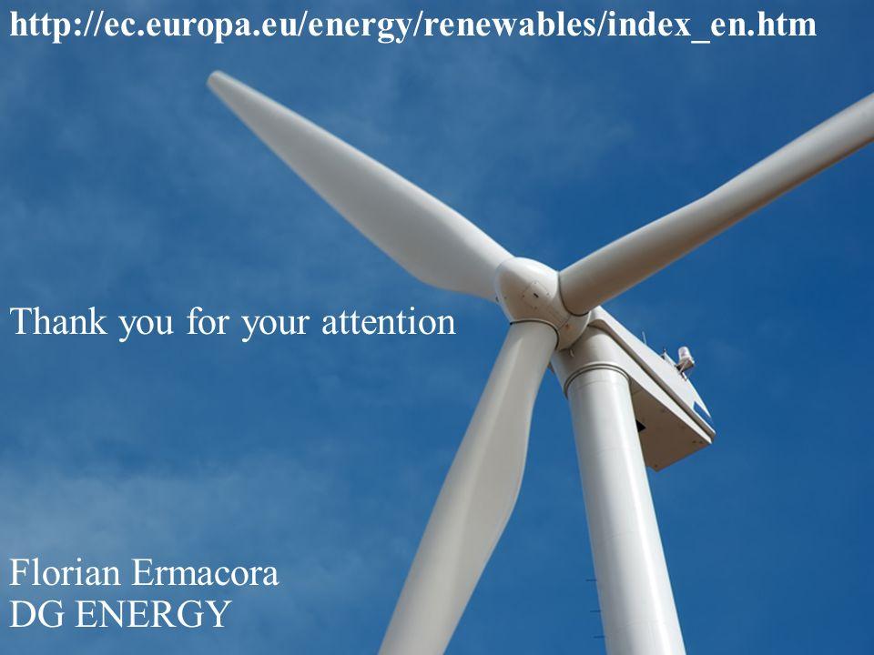 Florian Ermacora DG ENERGY