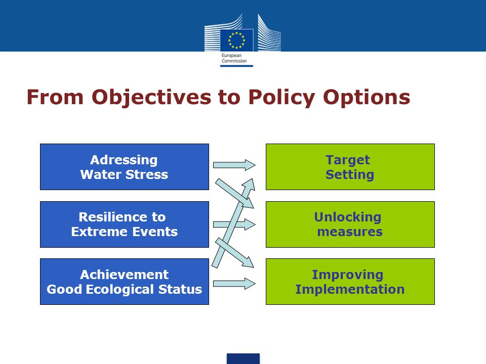 From Objectives to Policy Options