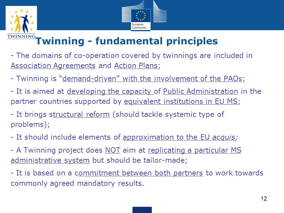 Twinning - fundamental principles