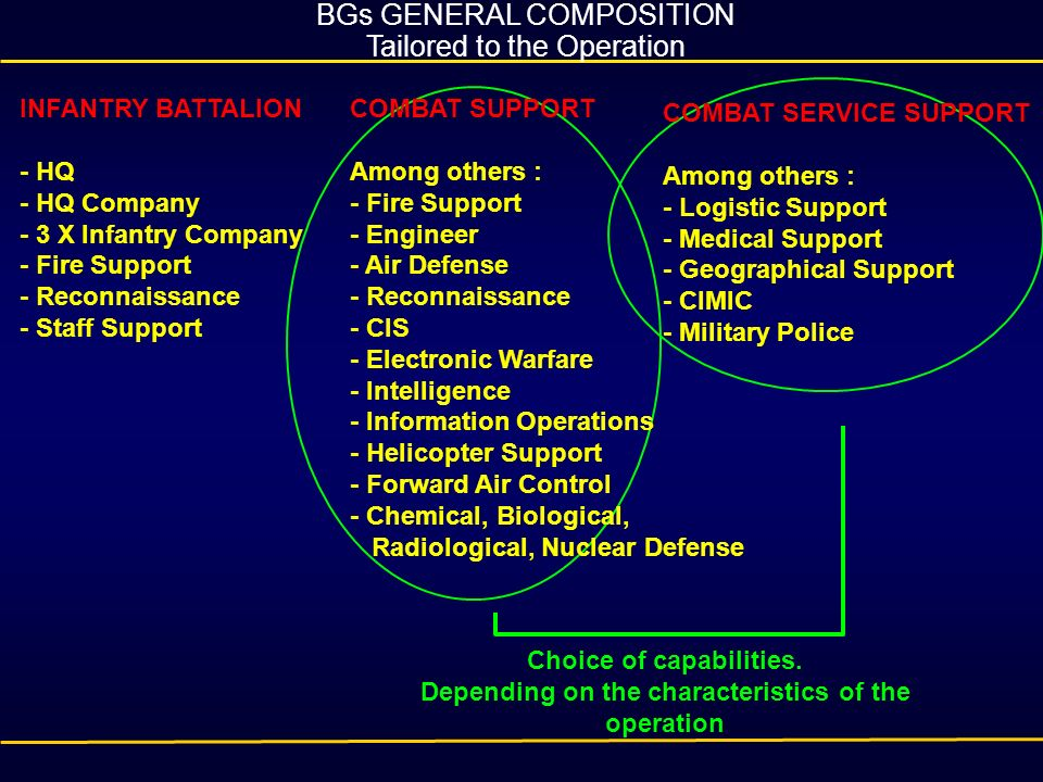 BGs GENERAL COMPOSITION Tailored to the Operation