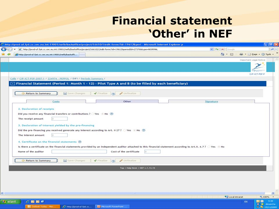 Financial statement 'Other' in NEF
