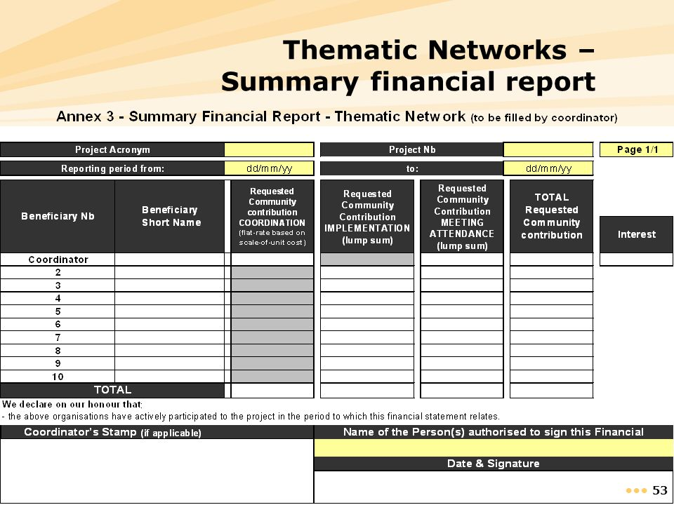 Thematic Networks – Summary financial report