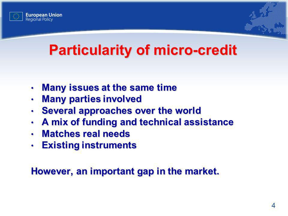 Particularity of micro-credit