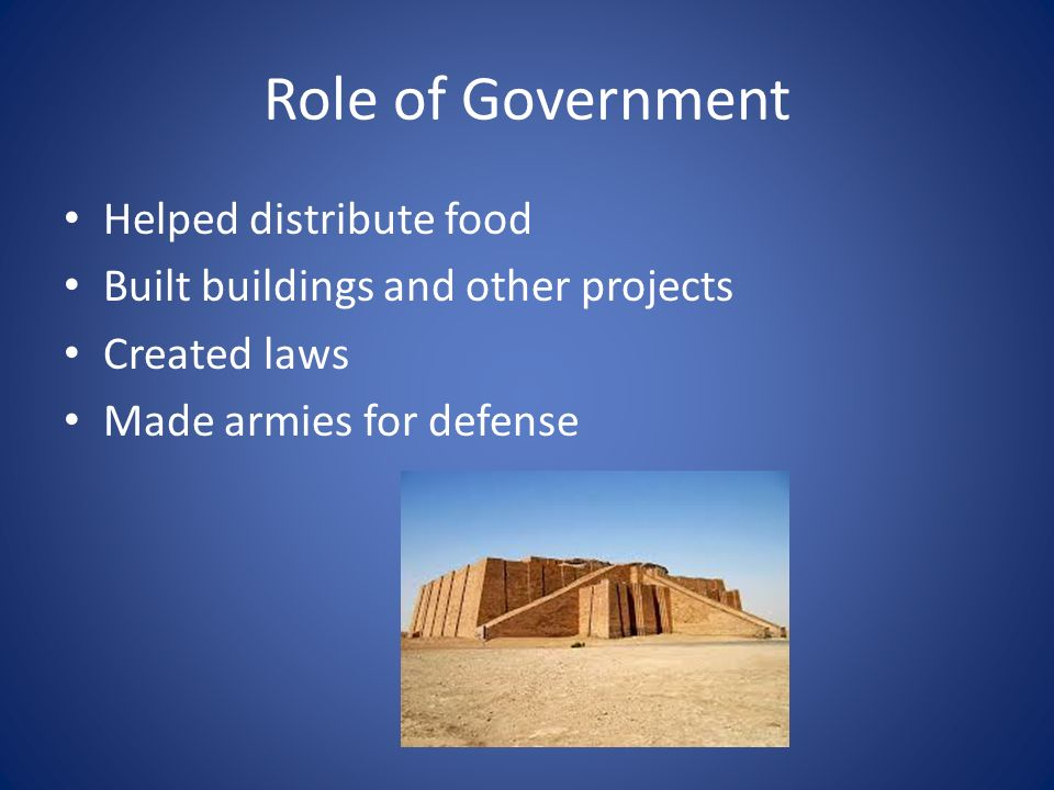 The Role of the Government in Building Business