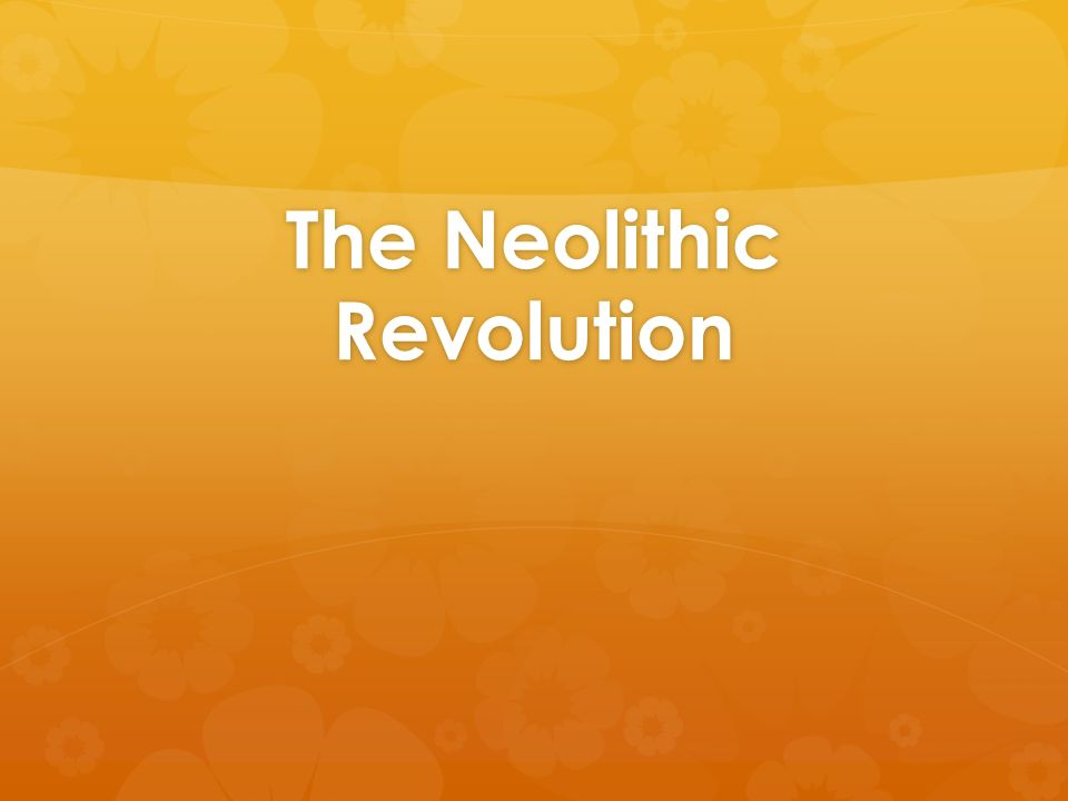 Neolithic Revolution Essay