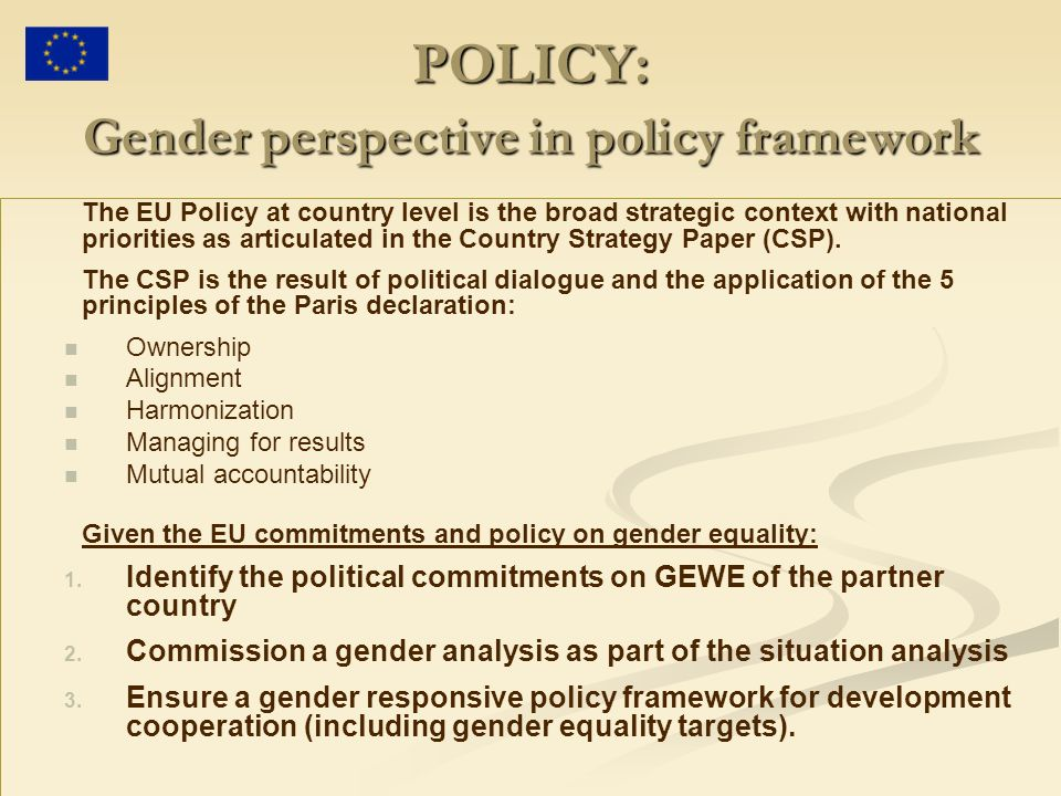 POLICY: Gender perspective in policy framework