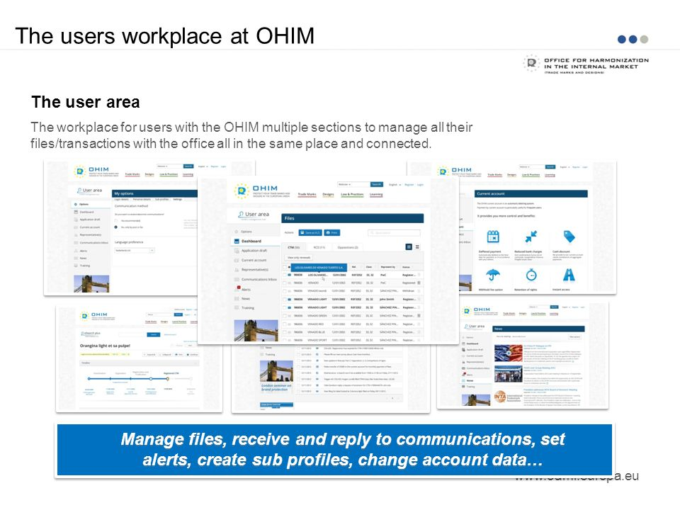 The users workplace at OHIM