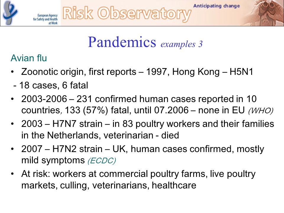 Pandemics examples 3 Avian flu