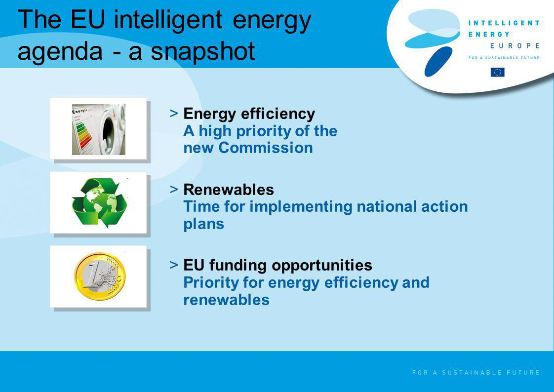 The EU intelligent energy agenda - a snapshot