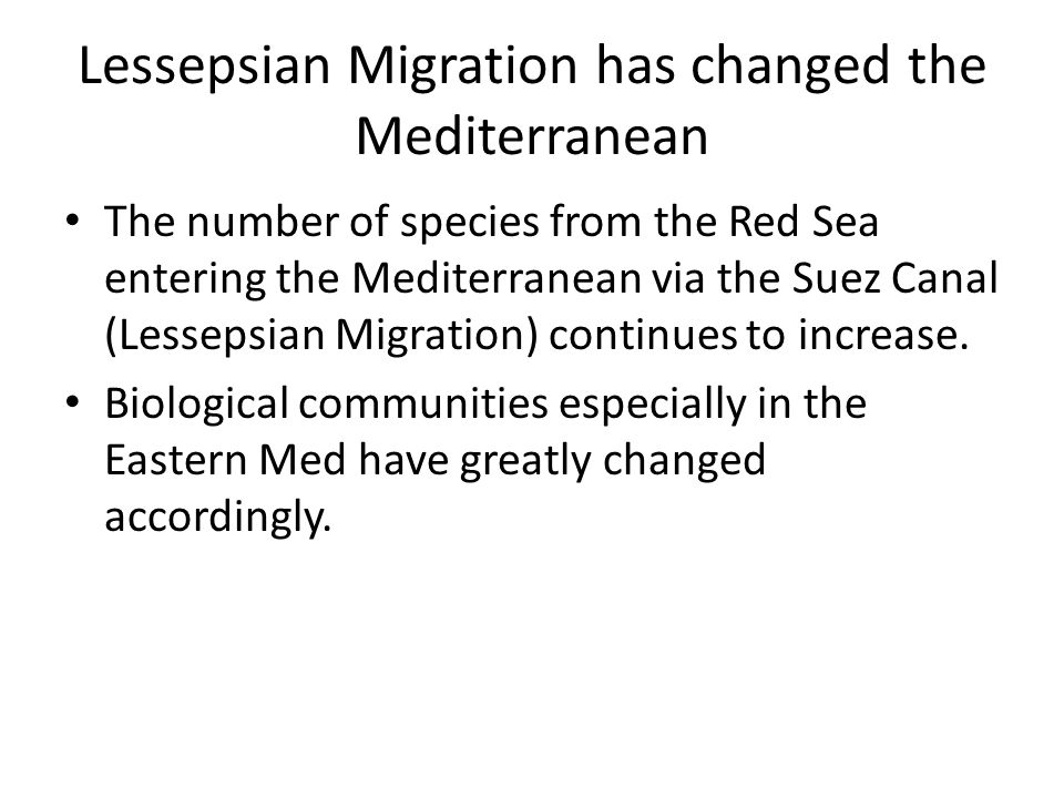 Lessepsian Migration has changed the Mediterranean