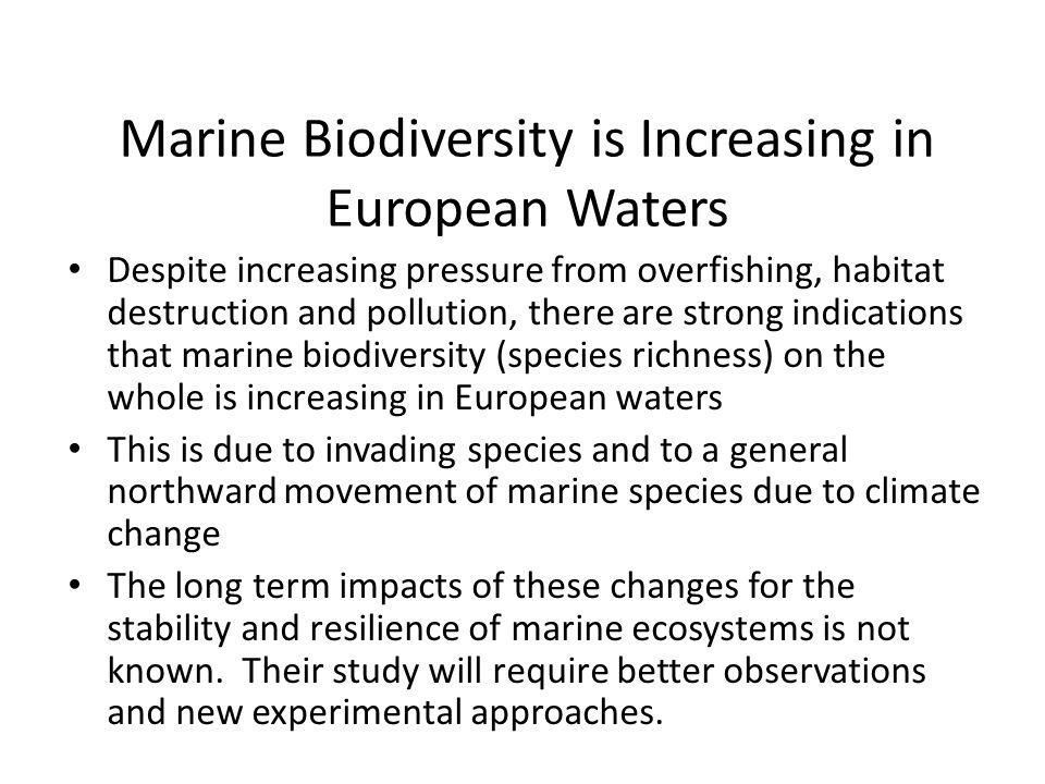 Marine Biodiversity is Increasing in European Waters