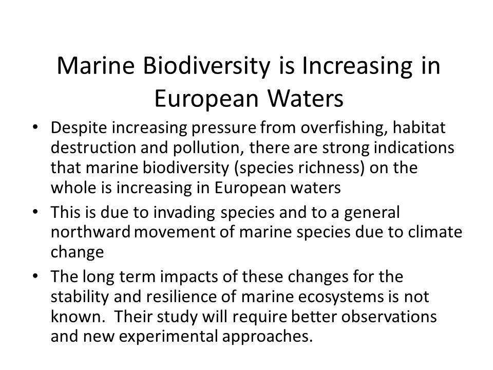 Marine Biodiversity is Increasing in European Waters