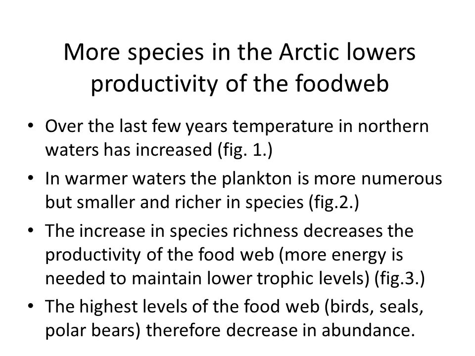 More species in the Arctic lowers productivity of the foodweb