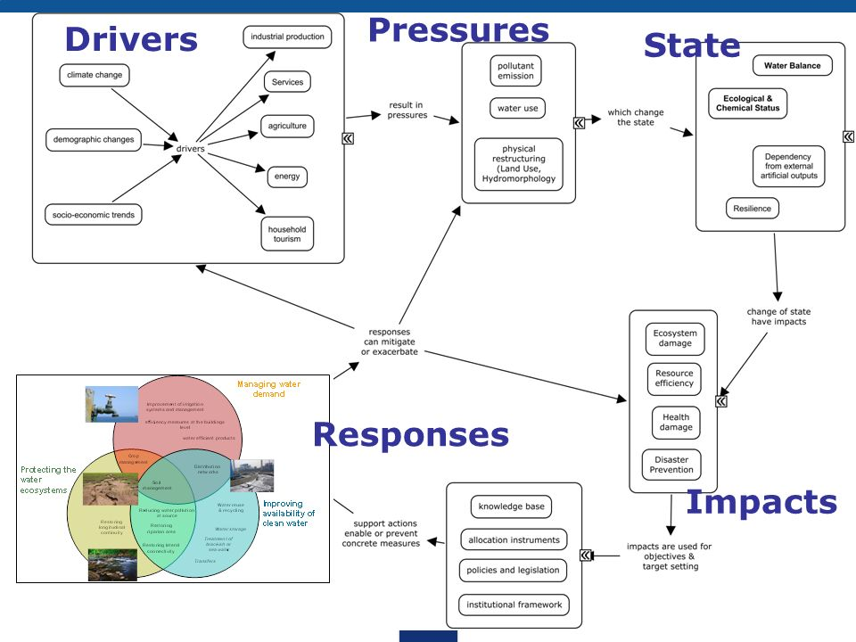 Pressures Drivers State Responses Impacts