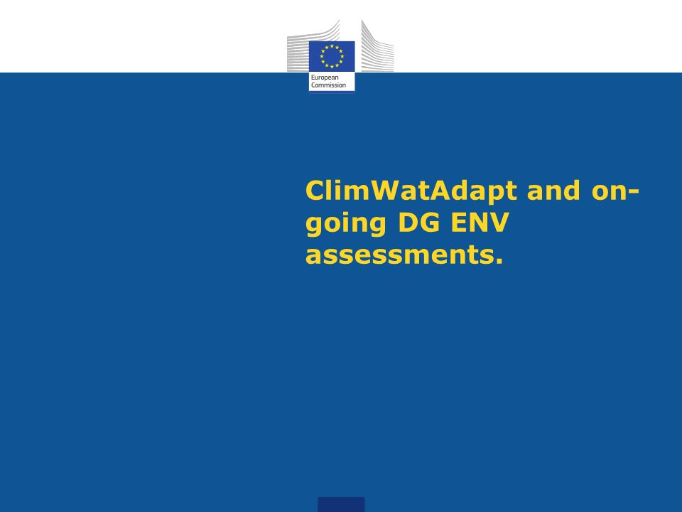 ClimWatAdapt and on-going DG ENV assessments.