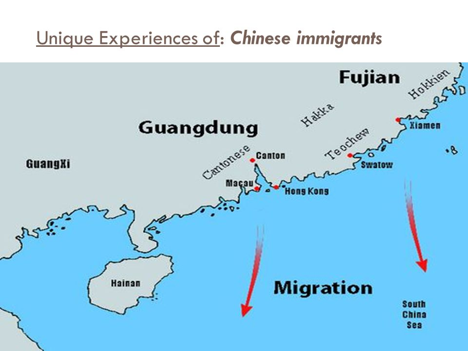 Chinese immigration experience essay
