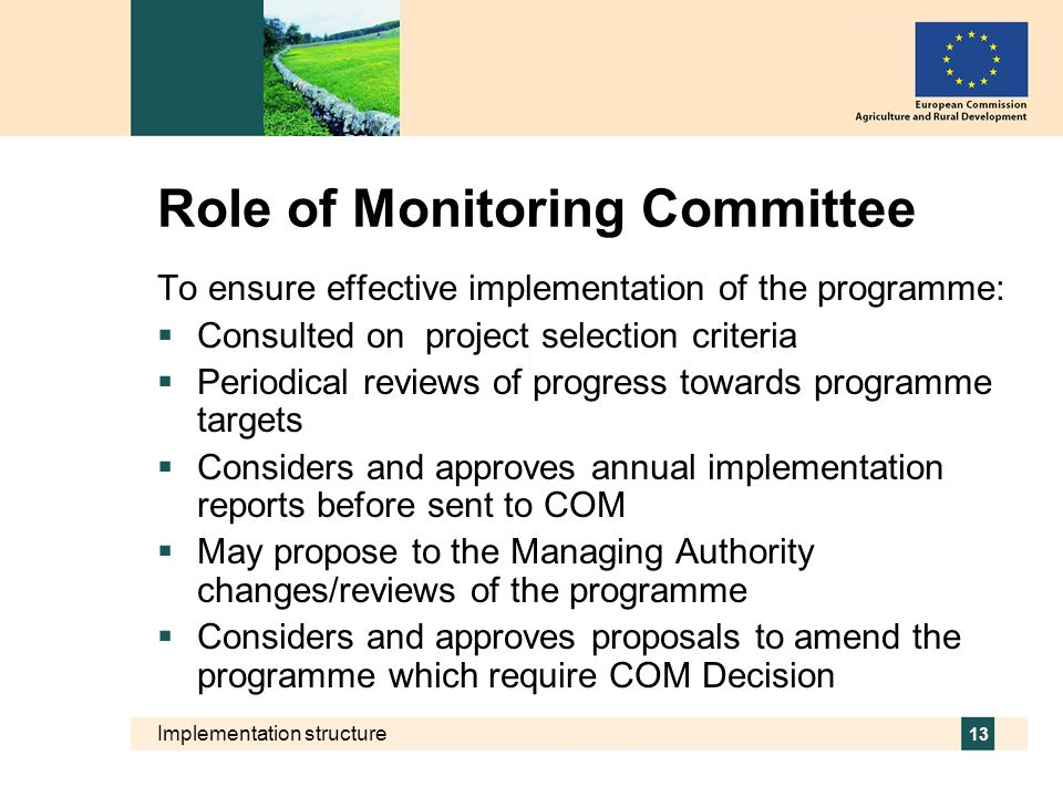 Role of Monitoring Committee