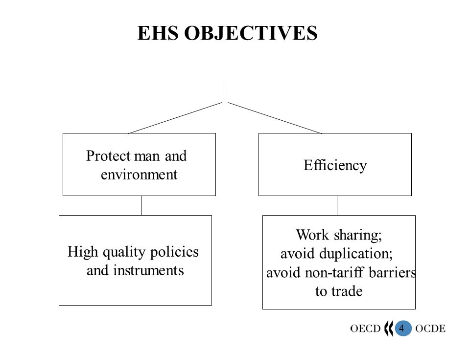 EHS OBJECTIVES Protect man and environment Efficiency Work sharing;