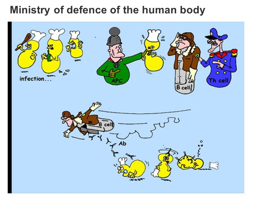 Ministry of defence of the human body