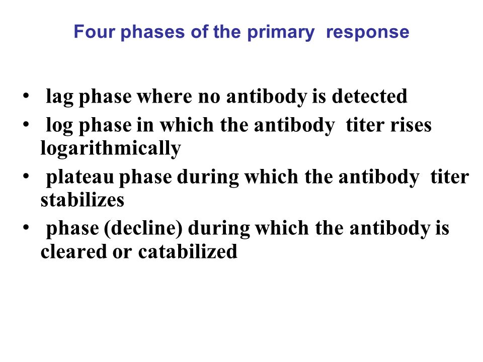 Four phases of the primary response