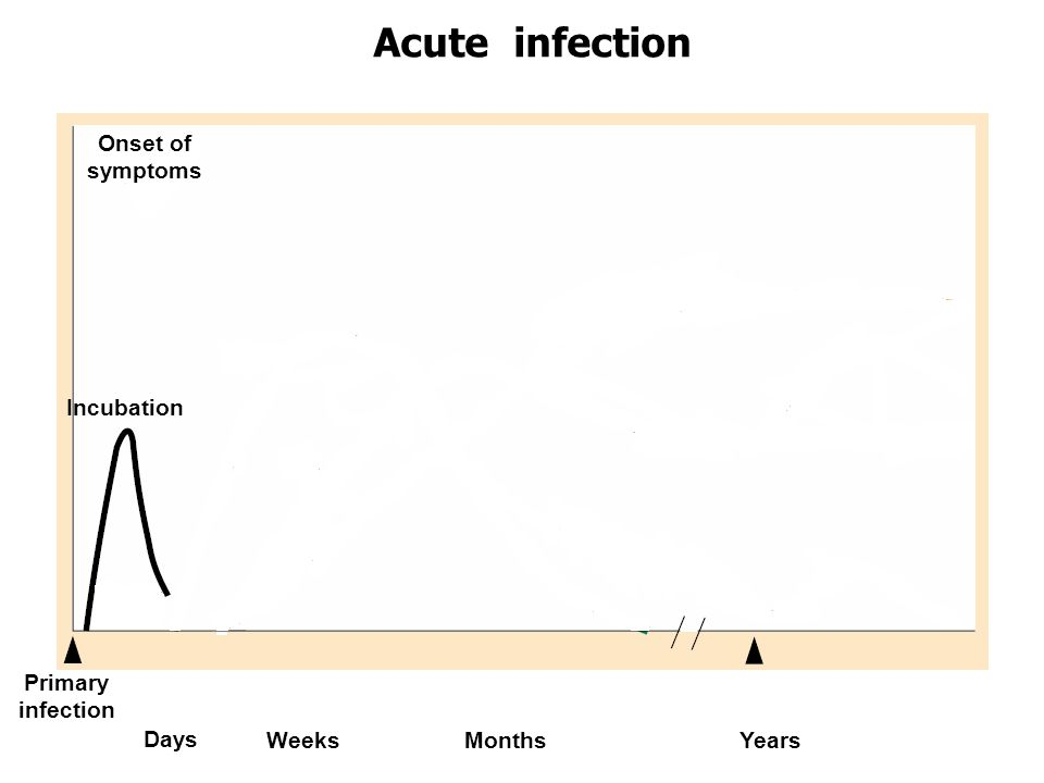 Acute infection Onset of symptoms Incubation Primary infection Days