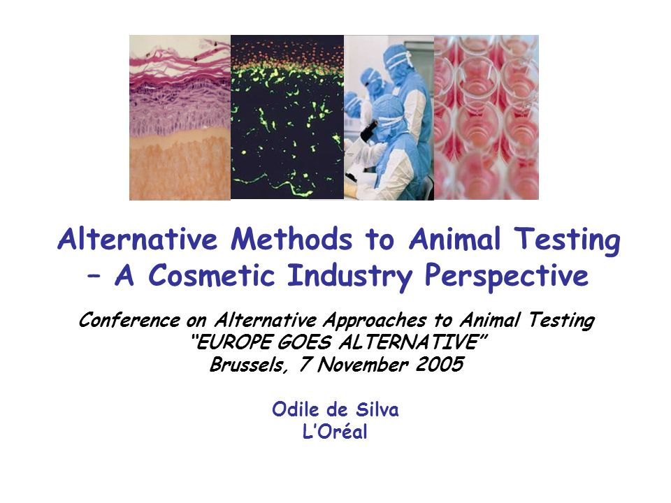 Alternative Methods to Animal Testing – A Cosmetic Industry Perspective