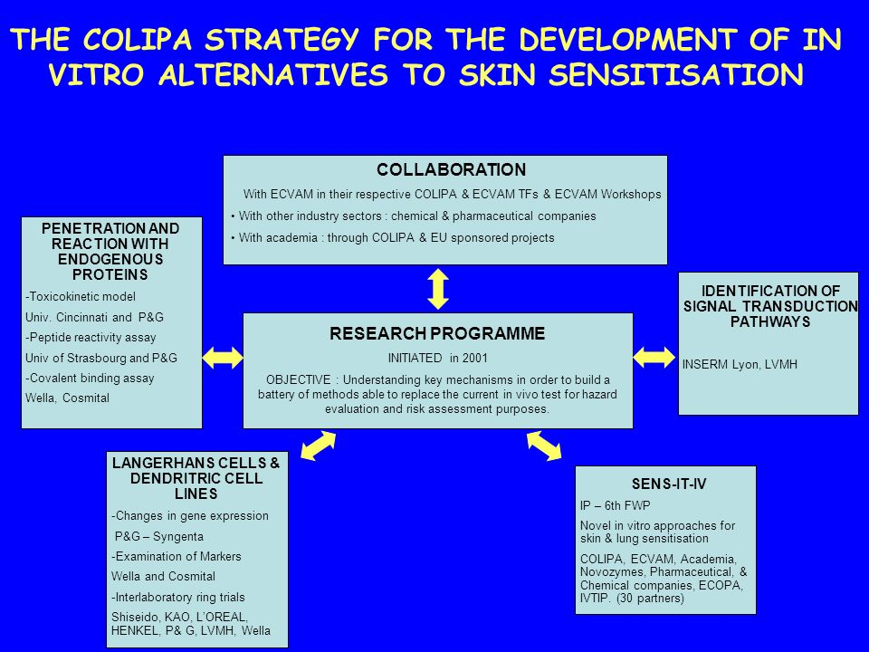 THE COLIPA STRATEGY FOR THE DEVELOPMENT OF IN VITRO ALTERNATIVES TO SKIN SENSITISATION