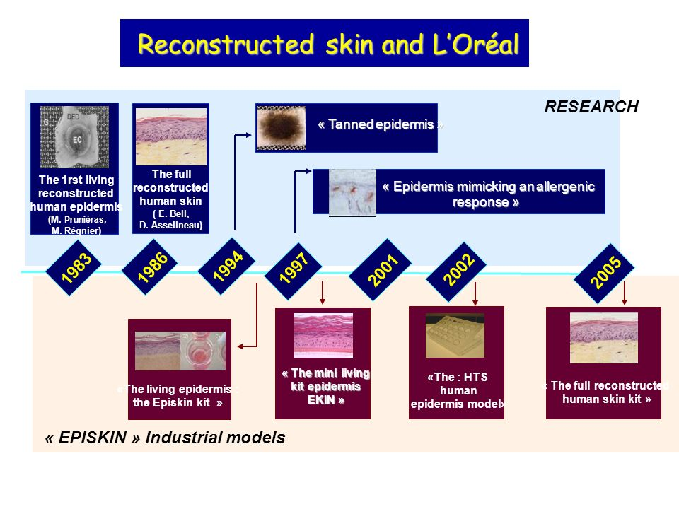 «The living epidermis : « The full reconstructed
