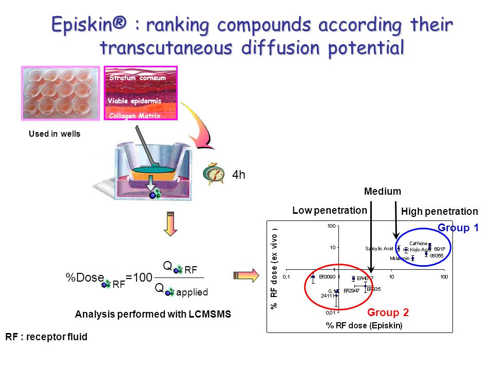 Episkin® : ranking compounds according their transcutaneous diffusion potential