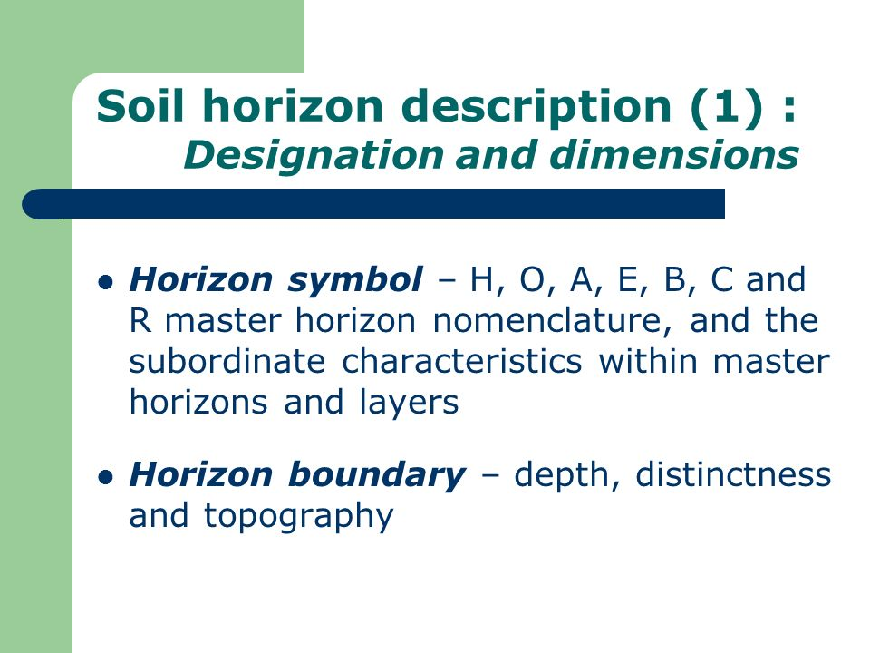 Soil horizon description (1) : Designation and dimensions