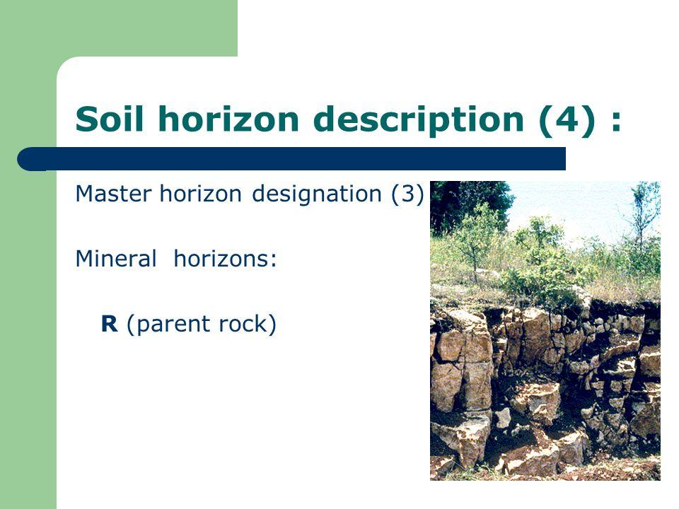 Soil horizon description (4) :
