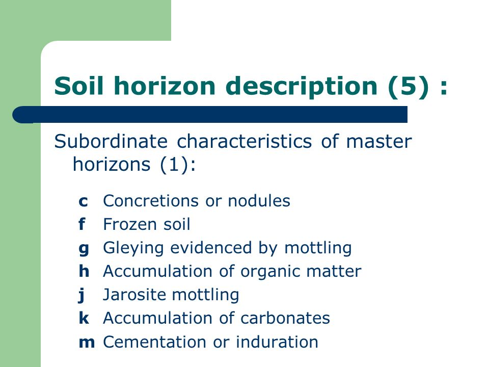 Soil horizon description (5) :