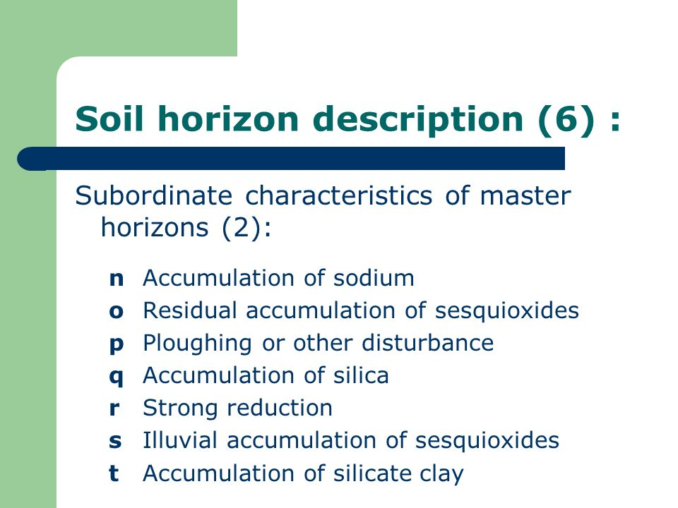 Soil horizon description (6) :