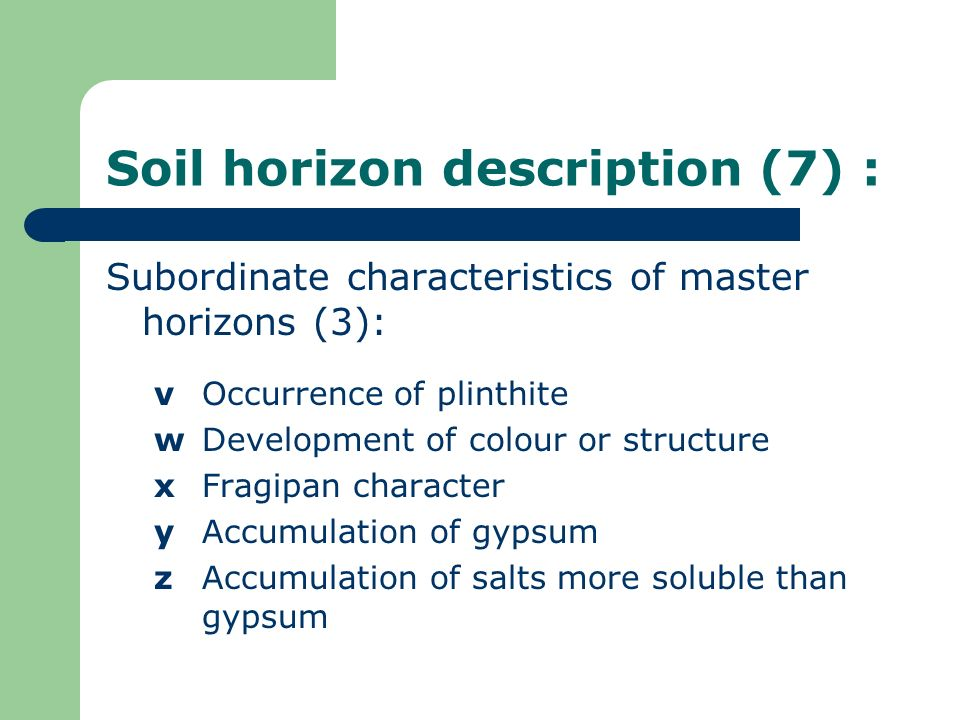 Soil horizon description (7) :