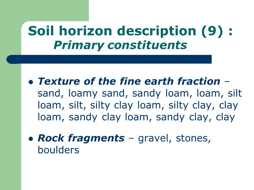 Soil horizon description (9) : Primary constituents